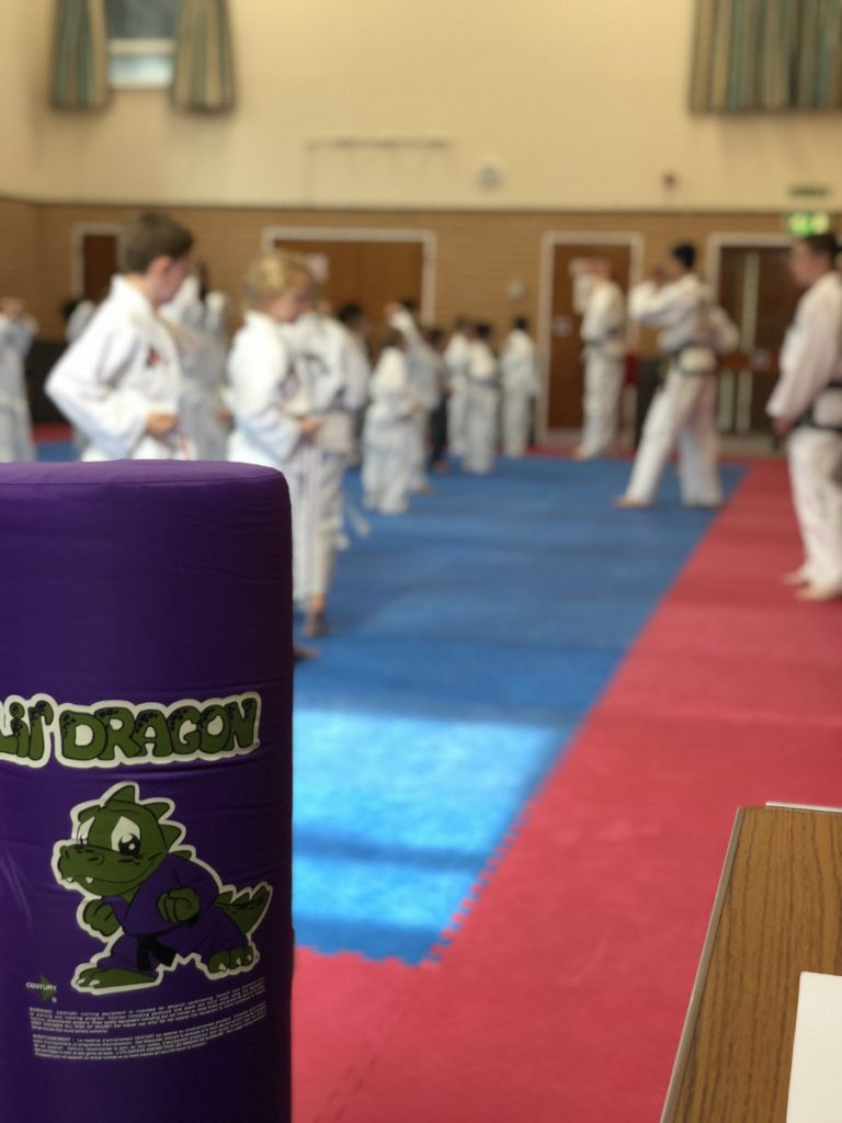 Little Dragons Taekwondo Class in Kettering